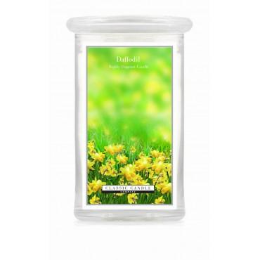 Duża świeca Daffodil Classic Candle