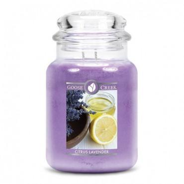 Duża świeca Citrus Lavender Goose Creek Candle