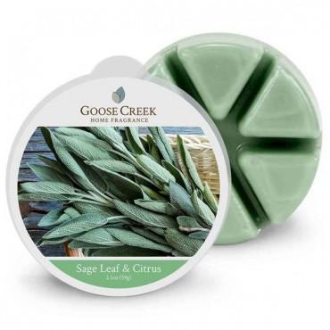 Wosk zapachowy Sage Leaf & Citrus Goose Creek Candle