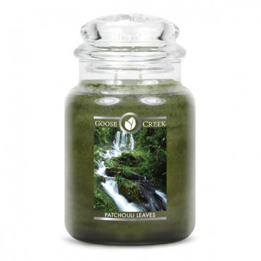 Duża świeca Patchouli Leaves Goose Creek Candle