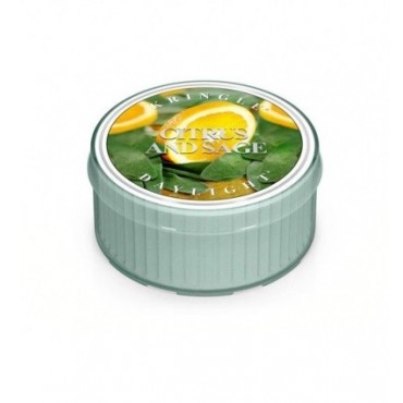 Świeczka Citrus and Sage Kringle Candle