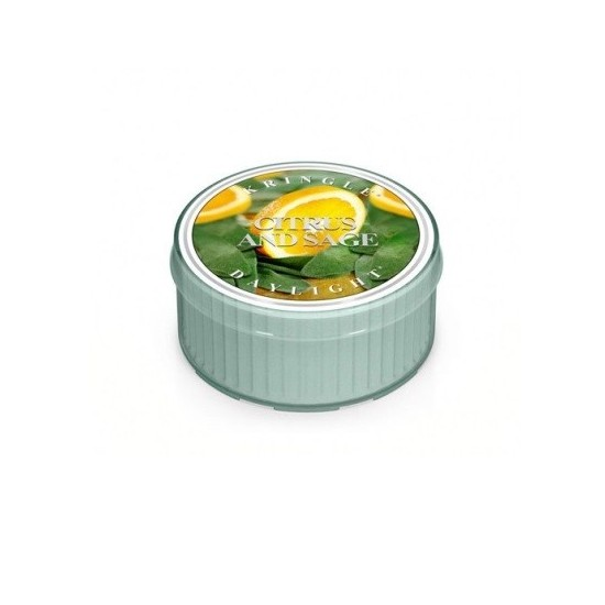 Daylight świeczka Citrus and Sage Kringle Candle