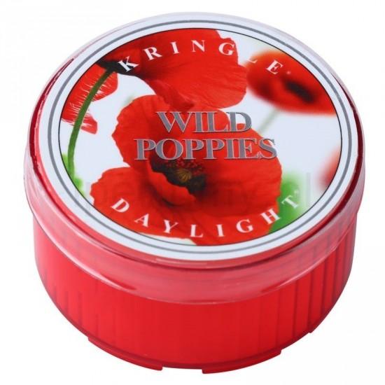 Daylight świeczka Wild Poppies Kringle Candle
