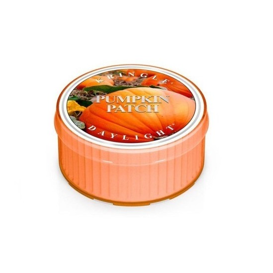 Daylight świeczka Pumpkin Patch Kringle Candle