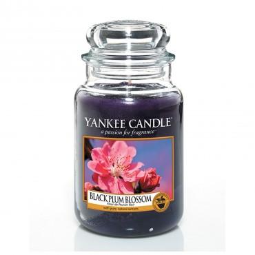Duża świeca Black Plum Blossoms Yankee Candle