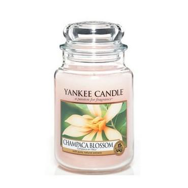 Duża świeca Champaca Blossom Yankee Candle