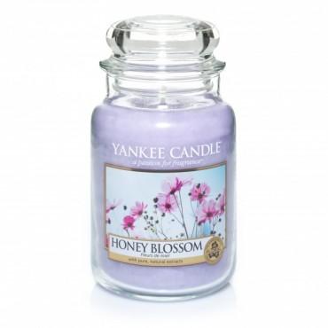 Duża świeca Honey Blossom Yankee Candle