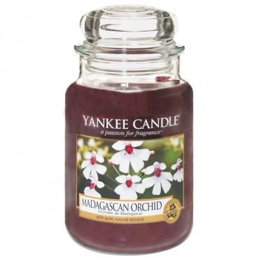 Duża świeca Madagascan Orchid Yankee Candle