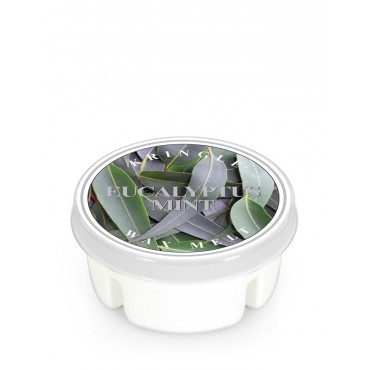 Wosk Eucalyptus Mint Kringle Candle