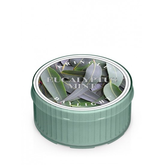 Daylight świeczka Eucalyptus Mint Kringle Candle