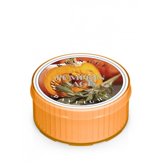 Daylight świeczka Pumpkin Sage Kringle Candle