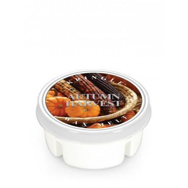 Wosk Autumn Harvest Kringle Candle