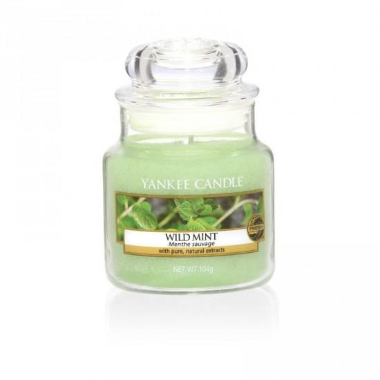 Mała świeca Wild Mint Yankee Candle