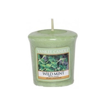 Sampler Wild Mint Yankee Candle