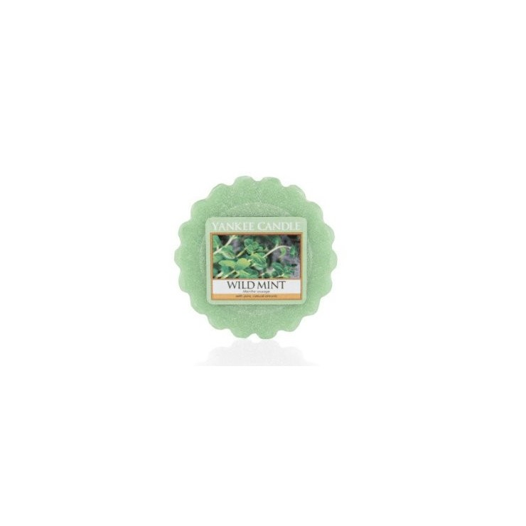 Wosk Wild Mint Yankee Candle