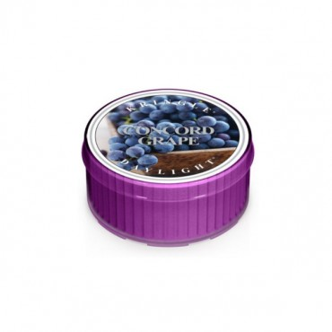 Daylight świeczka Concord Grape Kringle Candle
