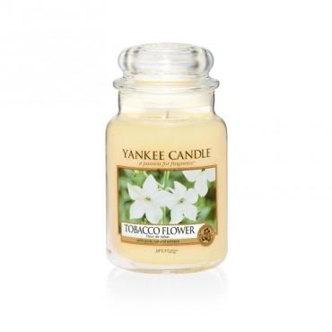Duża świeca Tobacco Flower Yankee Candle