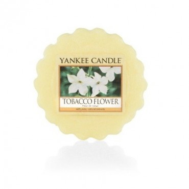 Wosk Tobacco Flower Yankee Candle