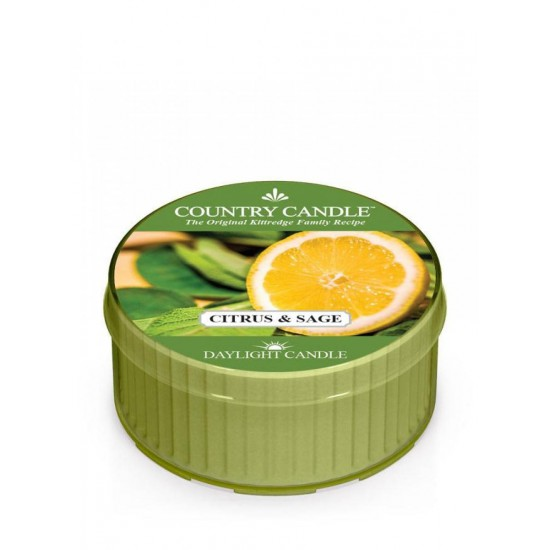 Daylight świeczka Citrus and Sage Country Candle