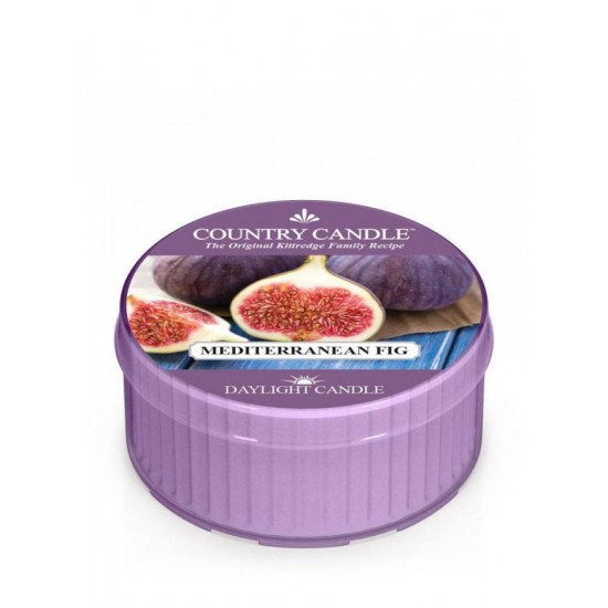 Daylight świeczka Mediterranean Fig Country Candle