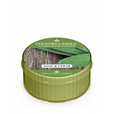 Daylight świeczka Sage and Cedar Country Candle