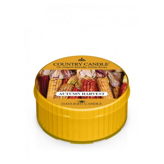 Daylight świeczka Autumn harvest Country Candle