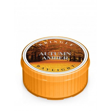 Daylight świeczka Autumn Amber Kringle Candle