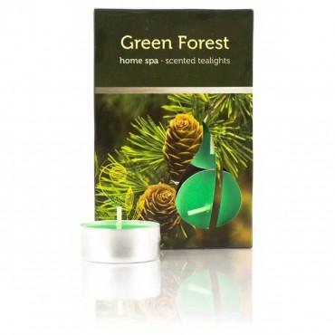 Podgrzewacz Zielony Las