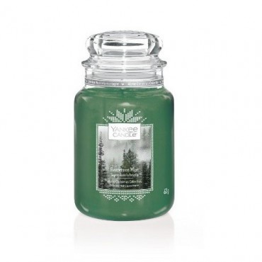 Duża świeca Evergreen Mist Yankee Candle