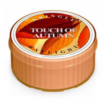 Daylight świeczka Touch of Autumn Kringle Candle