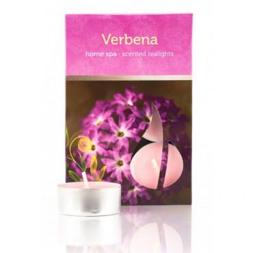 Świeczki zapachowe Werbena